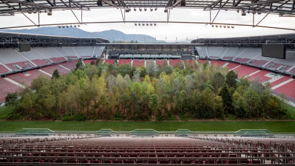 Fák a stadionban